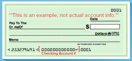 example of a check